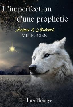 Couverture de L'imperfection d'une prophétie : Minigicien T0.5 (MM) par Eridine Thémys