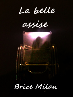 Couverture de La belle assise par Brice Milan
