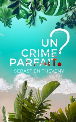 Couverture de Un crime parfait ? par Sébastien Theveny