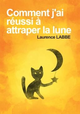 Couverture de Comment j'ai réussi à attraper la lune par LAURENCE LABBE
